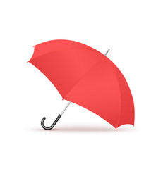 colorful red realistic open umbrella isolated on vector image