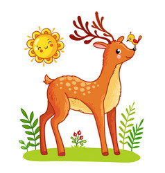 cute deer stands on the meadow vector image
