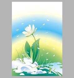 Flower snowdrop vector image