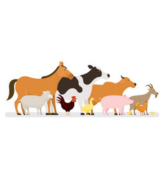 group of farm animals side view vector image