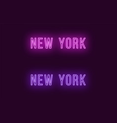 Neon name of new york city in usa text vector
