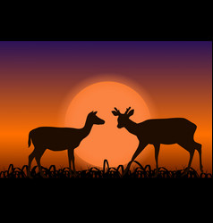 Sika deer with horns black silhouettes in sunset vector