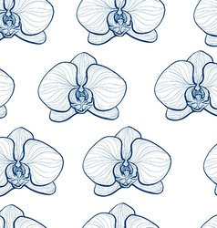 Orchids3 vector image vector image