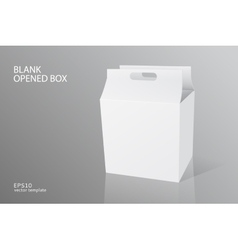 blank packing opened box vector image