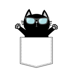 Cute black cat in the pocket wearing sunglasses vector