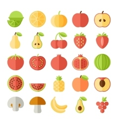 fruit flat icon set vector image