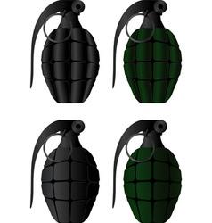 grenades vector image