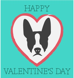 Happy valentines day boston terrier vector