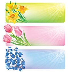 horizontal spring banners flowers vector image