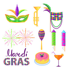 magri gras carnival attributes flat concept vector image