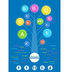 Poster of the vitamins in flat retro style vector image