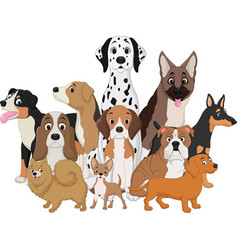 Set of funny dogs cartoon vector