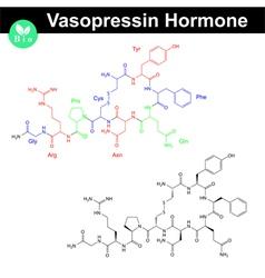 Vasopressin hormone molecule vector image