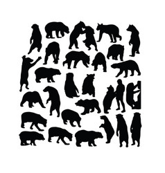wild bear activity silhouettes vector image
