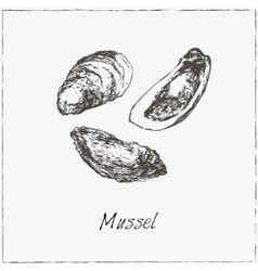 Mussel Hand drawn sketch vector image vector image