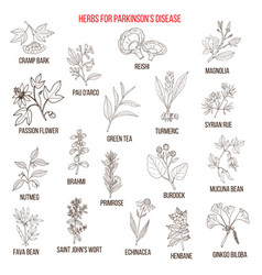 Best natural herbs for parkinson disease vector