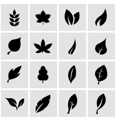 black leaf icon set vector image