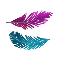 colored plume vector image