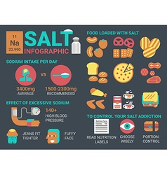 Salt infographic vector image