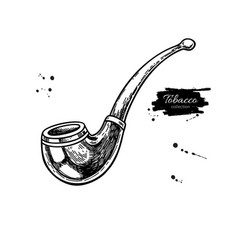 tobacco pipe drawing hand drawn vintage vector image