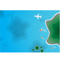 Top island view aerial view vector