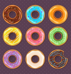 Colorful donuts sweet set vector image vector image