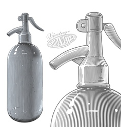 Vintage siphon bottle in engraved style vector image vector image