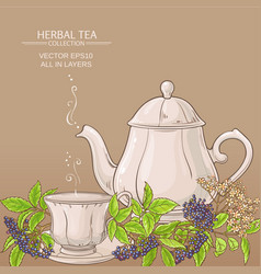 cup of elderberry tea and teapot vector image