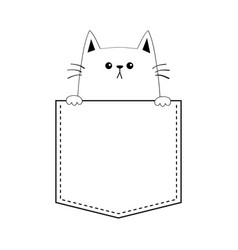 cute cat in pocket holding paw hands doodle vector image