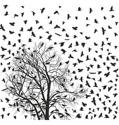 Flock of crows over tree vector image