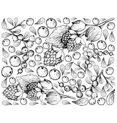 Hand drawn of golden himalayan raspberries and flu vector