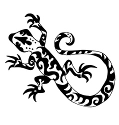 Hiqh quality origanl lizard or salamander drawn vector image