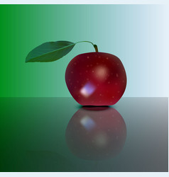 Red apple on mirror vector