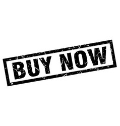 square grunge black buy now stamp vector image