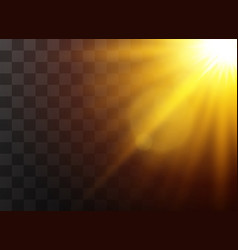 sunlight light effects vector image