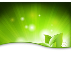 Green Eco Background With Leafs vector image