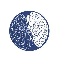 sketch ink human brain hand drawn vector image