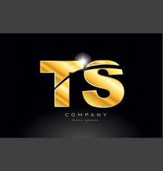 Combination letter ts t s gold golden alphabet vector