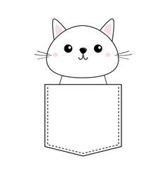 cute baby kitten sitting in the pocket pink vector image