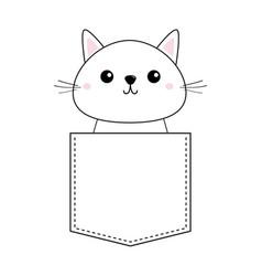 cute bakitten sitting in pocket pink vector image