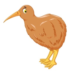 cute kiwi bird cartoon for you design vector image