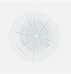isolated broken glass with hole crack and spider vector image