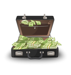 suitcase staffed by dollar banknotes leather case vector image