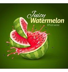 Watermelon with juice splash vector