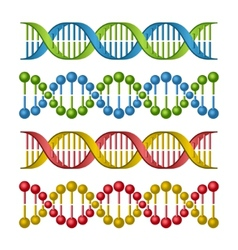 DNA Molecules Set for Science and Medicine Design vector image