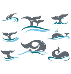 Whale tail icons vector image vector image