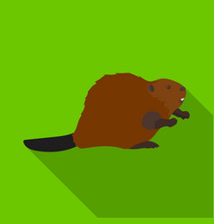 canadian beaver canada single icon in flat style vector image