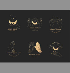 Collection fine hand drawn style logos and vector