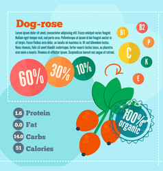Dog rose concept infographics vector