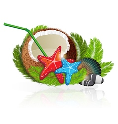 Coconut cocktail vector